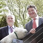 Solarstrom für Eisbären