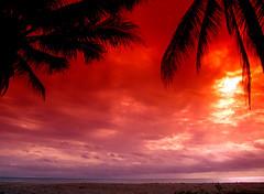 Beauty of sunset (AllWonders.com) Tags: sunset love amazing romance relationship lovepics loveimages romanticsunset