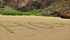 Hola back at you! (Astaken) Tags: beach lens ed islands ecuador san olympus islander galapagos lindblad national punta pitt 50200mm cristobal geographic 43 omd hola zd 2013 em5