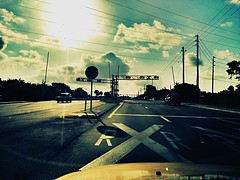 Crossing the rails (Shoentripp83) Tags: railroad morning florida gates largo railroadcrossing kitcam lomochrome
