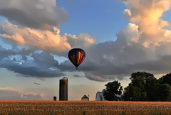 A Barn and A Balloon (Forsaken Fotos) Tags: wedding soar balloonride tailwindsoverfrederick weddinginaballoon