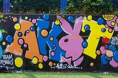 AKT (JOHN19701970) Tags: uk england streetart bunny london wall one graffiti paint artist akt july spray playboy abbeyroad graff aerosol robbo dds 2013 akt1 teamrobbo