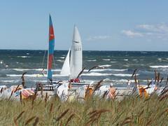25. . 8.    2013 019 (derbeobachterr) Tags: sea strand see meer wasser balticsea ostsee wellen ostwind scharbeutz lübeckerbucht ostseebad segler wellengang
