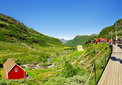 Norwegian Landscape (Charn High ISO Low IQ) Tags: trees summer panorama mountain green norway trekking landscape day cottage trainstation hillside scandinavia summerhouse flam myrdal hugin nikefexpro canon6d