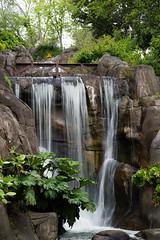 DSC_4326 (1N23456) Tags: sf california park ca bridge lake fall water stone river relax landscape golden waterfall nikon scenery gate san francisco serenity serene nikkor relaxation ggp d600