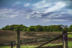 Spring Farm (denny.weinmann) Tags: wood rural fence spring cloudy farm soil kansas seedlings sonyalpha a6000 douglascoks