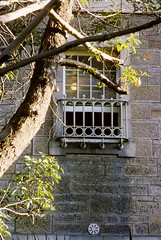 Ward window 1968