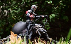 Ant-Man & Shelob (TaglessKaiju) Tags: antman shelob lordoftherings hobbit marvel comics superhero spider tolkien chandra magic thegathering nalaar scott lang henry pym