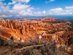 Bryce Canyon-312 (Steve Bark) Tags: bryce canyon utah north america usa landscape nature hoodoo desert olympus ep2 mft micro four thirds