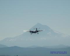 Q400 on Final Against Shadow of Mount Hood (AvgeekJoe) Tags: bombardierdhc8402q bombardierdash8400 bombardierdash8q402 bombardierq400 d5300 dhc8402q dslr dash8 dehavillandcanadadhc8402qdash8 mounthood mthood nikon nikond5300 other propliners q400 aircraft airplane aviation plane propliner turboprop