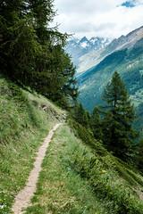 Zermatt 1 (jfobranco) Tags: switzerland suisse valais wallis alps zermatt gornergrat cervin matterhorn