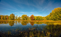 COLOURS OF PETRIE ISLAND (SAFIRE PHOTO) Tags: ottawa water autumn colour color reflection trees river lake safire safirephoto sky landscape outdoor