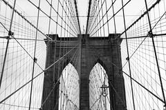 Brooklyn Bridge Cables and Tower (Bradley N. Weber) Tags: brooklynbridgephotos brooklynbridgephotography bridgephotos brooklynbridgecables brooklynbridgebw brooklynbridgeblackandwhite firststeelwiresuspensionbridge nationalhistoriclandmarkphoto nationalhistoriclandmark nat national historic nationalhistoriccivilengineeringlandmark famousbridges famousbridgesphotos bridgecabledesign