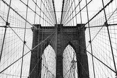 Brooklyn Bridge Cables and Tower (Bradley N. Weber) Tags: brooklynbridgephotos brooklynbridgephotography bridgephotos brooklynbridgecables brooklynbridgebw brooklynbridgeblackandwhite firststeelwiresuspensionbridge nationalhistoriclandmarkphoto nationalhistoriclandmark nat national historic nationalhistoriccivilengineeringlandmark famousbridges famousbridgesphotos bridgecabledesign
