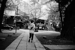 GIMBAL (Dinasty_Oomae) Tags: minolta  minoltina  minoltinas s   tokyo   monochrome outdoor street bw blackwhite blackandwhite   arakawaku nishinippori  suwajinja
