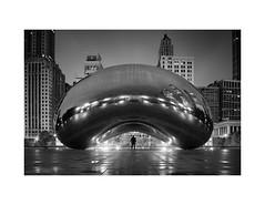 joy and peace (.brianday) Tags: chicago joy peace