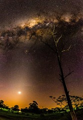 urban view of venus and the milky way (andrew.walker28) Tags: milky way galaxy galactic centre center core stars starlight nightscape night dark long exposure acland queensland australia sky