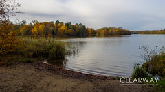 Autumn at Virginia Water (Clearway Photography) Tags: autumn virginiawater surrey water lake tree landscape trees