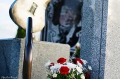 Flowers1 (che2525) Tags: hendrix jimmy memorial grave site purple haze little wing rock roll