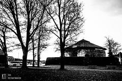 Christiansholm Festning (KrishTh) Tags: ifttt 500px kristiansand christiansholm sunrise soloppgang nature festning black white bw sky skies silhuettte silhuette siluett sea ocean trees norway