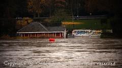 Torino (33) (cattazen.com) Tags: alluvione torino po esondazione parcodelvalentino murazzi pienadelpo cittditorino turin piemonte