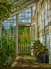 04x2016 Calke 33 (garethedwards36) Tags: glasshouse greenhouse hdr architecture building glass green blue plants calke abbey park derbyshire midlands uk lumix