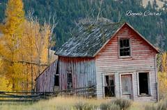 Rustic Charm (bonniecairns1) Tags: farm barn abandoned canada britishcolumbia bc fall autumn rustic