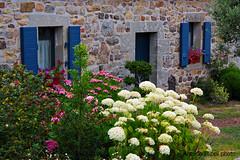 Kerguille (filippi antonio) Tags: kerguille crozon finistere bretagne bretagna brittany francia france casa house giardino garden fiori flowers abitazione verde green nature