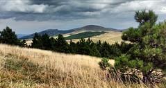 Zlatibor (mtomic28) Tags: clouds zlatibor serbia srbija landscape field valley summer europe sky grass mountain grassland
