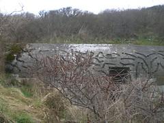 Bunker(7)