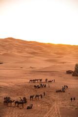 IMG_6088 (Israel Filipe) Tags: marrocos