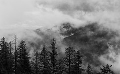 Cloudy Times (AnyMotion) Tags: clouds wolken forest wald morning morgen mountains berge nature natur 2016 anymotion travel reisen highway20 chilcotinbellacoolahighway britishcolumbia canada kanada bw blackandwhite sw 7d2 canoneos7dmarkii landscape landschaft landschaftsaufnahmen ngc npc