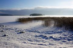 Snowy Joensuu (Sami Niemelinen (instagram: santtujns)) Tags: joensuu suomi finland snow lumi talvi winter luonto nature pohjois karjala north carelia maisema landscape pyhselk jrvi lake noljakka aavaranta