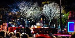 2016.12.01 Christmas Tree Lighting Ceremony, White House, Washington, DC USA 09321-2