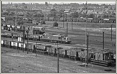Spotlight on Toton Yard (david.hayes77) Tags: 1976 toton longeaton nottinghamshire derbyshire class37 class20 37105 mono bw blackandwhite 8m27 marshallingyard totonyard mgr merrygoround trix kodak aculux film