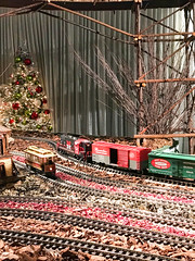 HTS-39 (Peter Parides) Tags: unitedstates newyork christmas trains newyorkbotanicalgardens new york city