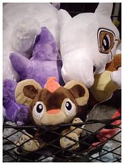 Calgary Expo Holiday Market - buy me (Wanderfull1) Tags: calgaryexpo holidaymarket 2016 toy plushtoy