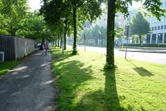 DSCF4141 (Josh Pao) Tags: fujixe2  nederland netherlands  europe