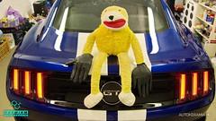 Mustang_29 (holloszsolt) Tags: ford mustang 50 outdoor vehicle sport car nanolex si3 hd autokeramia
