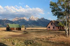 Mormonrow1 (laelia74) Tags: wyoming grandtetons fall nature outside hiking mountains