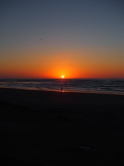 the sun set into the ocean (murozo) Tags: sunset sun coast kisakata nikaho akita japan beach winter sea ocean bird