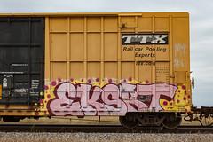 (o texano) Tags: texas graffiti trains freights bench benching eksert