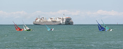 MV Galloway Express, Napier Harbour, Hawkes Bay, NZ - 3/12/16 (Grumpy Eye) Tags: nikon d7000 nikkor 105mm 28 mv galloway express napier port harbour