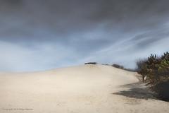 Dutch Desert (Pieter Musterd) Tags: holland nature canon sand desert empty dunes nederland thenetherlands sable natuur denhaag bunker 5d duinen thehague zand emptyness leeg woestijn sgravenhage musterd westduinpark leegheid pietermusterd hofstijl canon5dmarkii denhaag2018