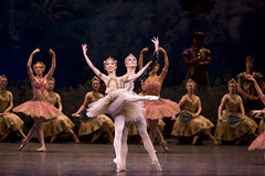 Your reaction: La Bayadère