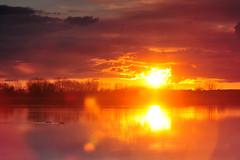 Big Kansas Sunset (NaturalLight) Tags: park sunset water creek reflections ducks kansas wichita chisholm chisholmcreekpark
