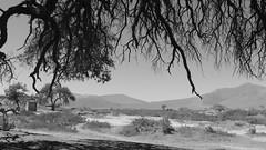 Sossusvlei (tor-falke) Tags: africa afrika namibia swa africalandscape torfalke flickrtorfalke