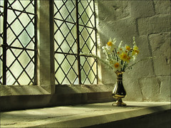 A peaceful corner (pefkosmad) Tags: flowers sunlight reflection window nice interior peaceful calm herefordshire windowsill caustics stmaryschurch narcissi leadedwindow pembridge