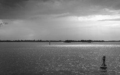 Elbe (>TIM<) Tags: blackandwhite bw sun sunlight water clouds reflections river hamburg elbe 30mm