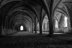 146/365 (yorkshirepudding76) Tags: park bw history abbey architecture ruins royal monastery 365 fountains fountainsabbey nationaltrust cistercian hdr northyorkshire ripon studley photomatix cellarium